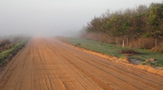 Sunday – Clay Road Run – 6 am